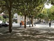 Foto 1 del punto Ajuntament de Berga