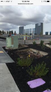 Foto 1 del punto Tesla Factory - Tesla