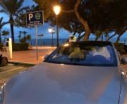 Foto 3 del punto Punta de'n Castelló