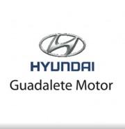 Foto 2 del punto Guadalete Motor Hyundai