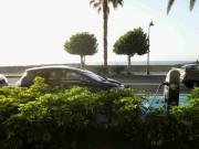 Foto 1 del punto Santa Cruz de La Palma