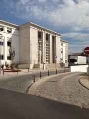 Foto 5 del punto Tribunal